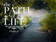 The_path_of_life